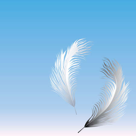 Vector card with two delicate feathers flying in sky  イラスト・ベクター素材