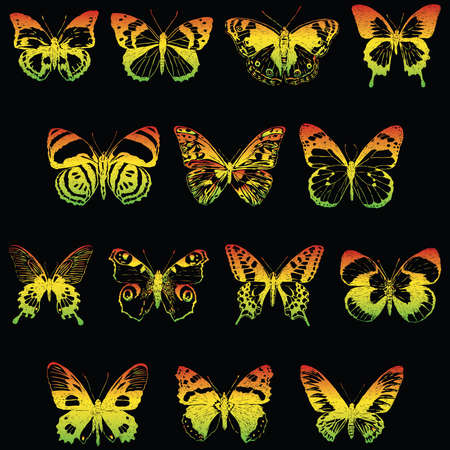 Vector image of set various colorful butterflies  イラスト・ベクター素材