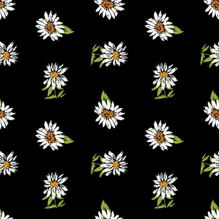 Seamless background of sketches white chamomiles