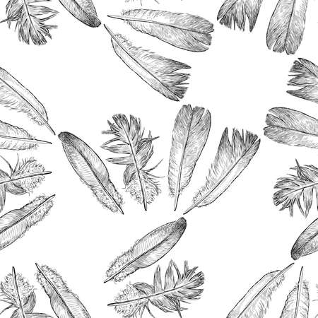 Seamless pattern of sketches various birds feathers