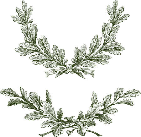 Freehand drawings of triumphal oak branches with acorns and ribbon