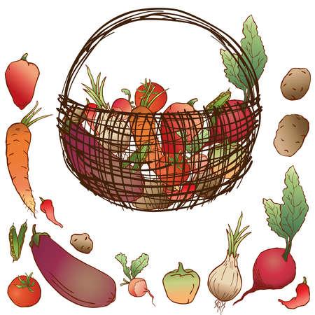 Vector image of crop various ripe vegetables in basket