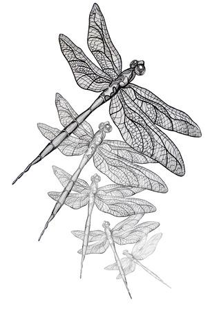 Vliegen als een Dragon originele pen illustratie