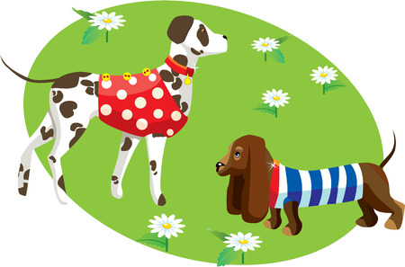 cartoon of dogs in clothes (Dalmatian and dachshund) - oval frame on white isolated background Vector