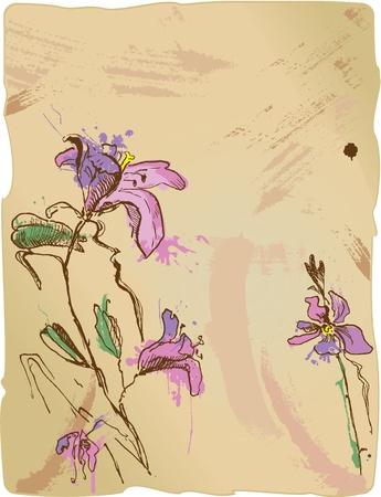 vieze handen: aquarel schets van iris bloemen op oude perkament met lege ruimte voor uw tekst Stock Illustratie