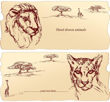Lion and cheetah heads. Hand drawn ink portrait horizontal sketch. Vector