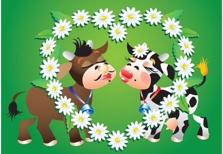 ox eye daisy: Cartoon kissing cows and camomile border