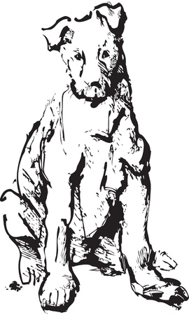 ink sketch of dog - young terrier. black and white picture Vector