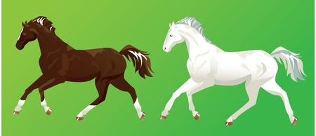 strong wind: 2 horses on green background Illustration