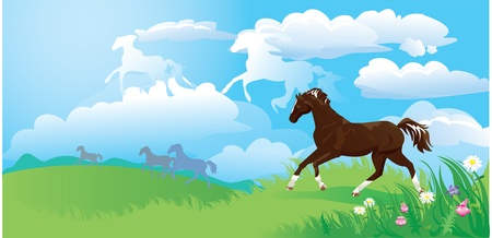 country side: country side landscape with horses and clouds