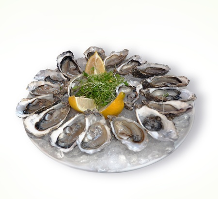 fresh oysters on a white background