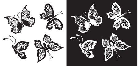 Set of silhouette butterflies collection on white and black backgrounds Vector