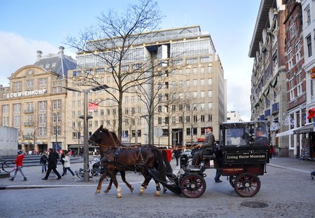 dutch landmark: A carriage horse on Amsterdam Dam square Editorial