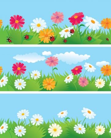 abloom: 3 fronteras sin fisuras con las flores de los ojos de buey margaritas y mariquitas Vectores
