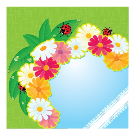 ladybirds and daisies - summer card with empty space for your text Stock Vector - 14600516