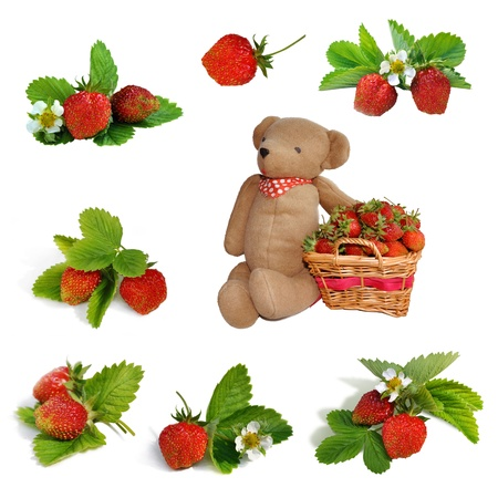 bear berry: Set of Strawberries, basket and hand made teddy bear toy Stock Photo