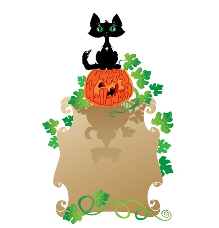 Funny Halloween Cat and Pumpkin Vector
