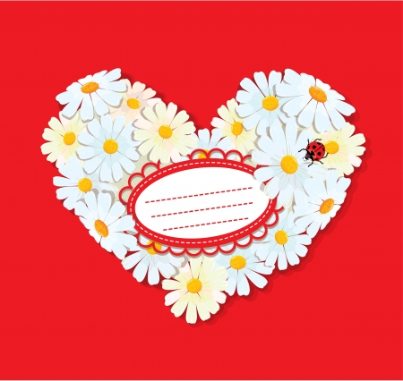 Heart is made of daisies on a red background. Valentines day card.  Vector