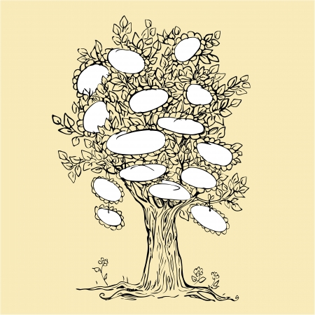 La conception de l'Arbre avec des cadres vides pour le texte - image dessin Sketchy