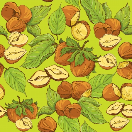 Seamless pattern with highly detailed hand drawn hazelnuts on green background Vector