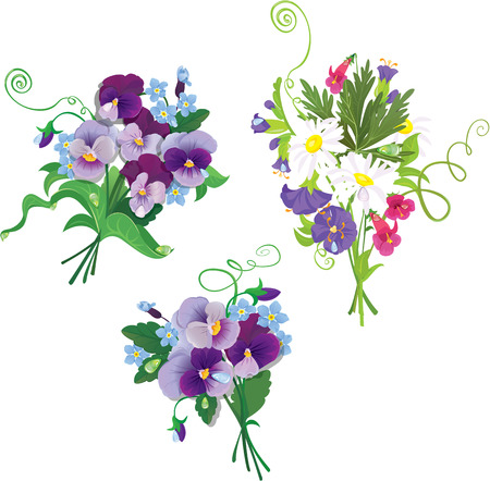 forget me not: Set of holidays bouquets with chamomiles, pansies and forget me not flowers isolated on white background. Elements for holiday design. Illustration