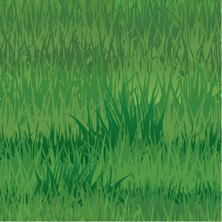 springing: Seamless pattern - texture of grass Illustration