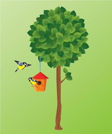 illustration of green tree, tit birds and nesting box. Illustration