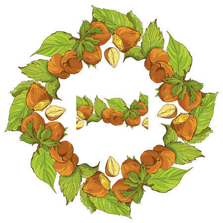 highly detailed: Circle ornament with highly detailed hand drawn hazelnuts isolated on white background. Pattern endless fragment. Illustration