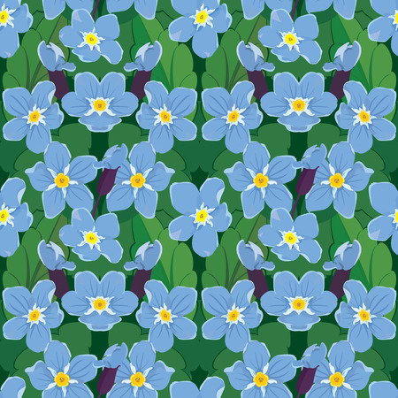 forget: Seamless pattern with beautiful flowers - forget me not - floral nature background. Illustration