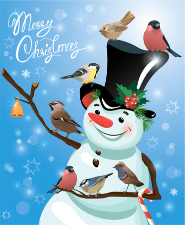 tit: Card with funny snowman and birds on blue snow background, cartoons for winter, Christmas or New Year design. Hand written text Merry Christmas.
