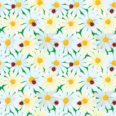 chamomile: Seamless pattern with chamomile flowers and ladybirds, summer background