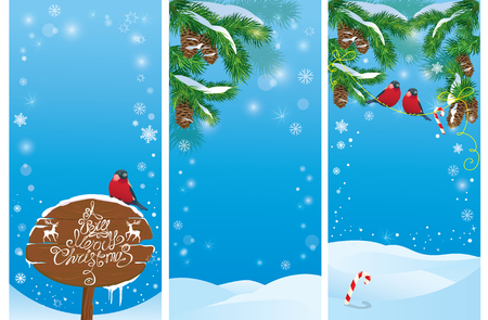 christmas banner: Set of vertical banners with fir tree branches and bullfinch birds on light blue sky background. Images for Christmas and New Year design. Illustration