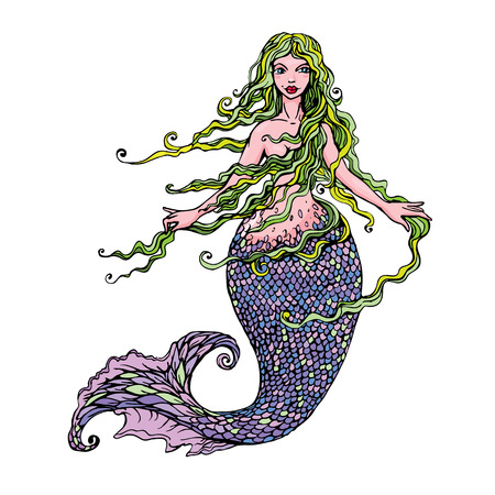 mermaid: Hand drawn Illustration of a Beautiful mermaid girl isolated on white background.