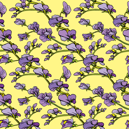 in peas: Seamless pattern with Realistic graphic flowers - sweet pea - hand drawn background.