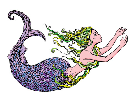 sea nymph: Hand drawn Illustration of a Beautiful mermaid girl isolated on white background.