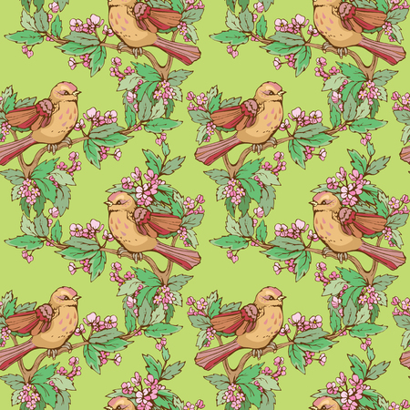 floral decoration: Seamless pattern with colorful birds and blooming summer flowers, handdrawn background