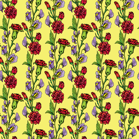in peas: Seamless pattern with Realistic graphic flowers - sweet pea and clove - background. Illustration