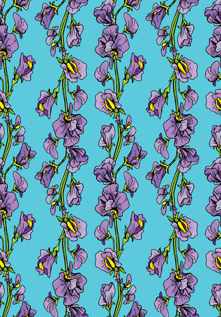 sweet pea: Seamless pattern with Realistic graphic flowers - sweet pea -  background.