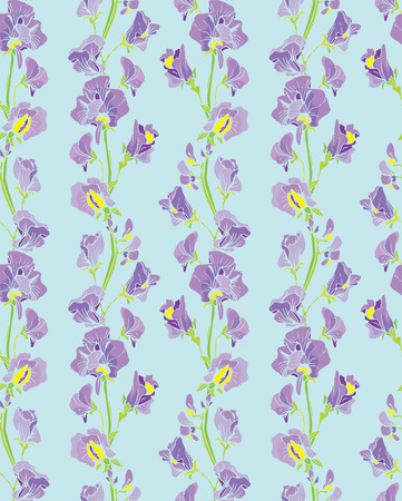sweet pea: Seamless pattern with Realistic graphic flowers - sweet pea - hand drawn background.