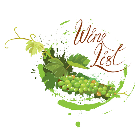 Bunch of green grapes with leaves and wine stain isolated on white background. Handdrawn text Wine list. Element for restaurant, bar, cafe menu or label.