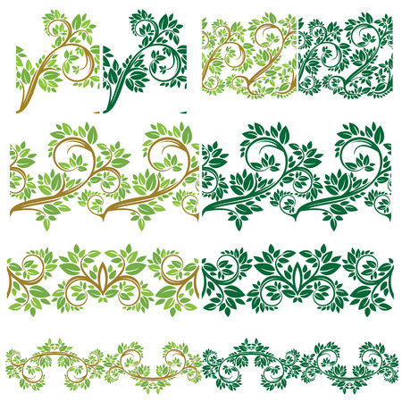 Twigs: Set of Floral seamless detailed ornaments, borders, frames with olive tree leaves and curled branches isolated on white background. Illustration