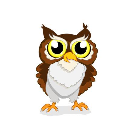 owlet: owlet