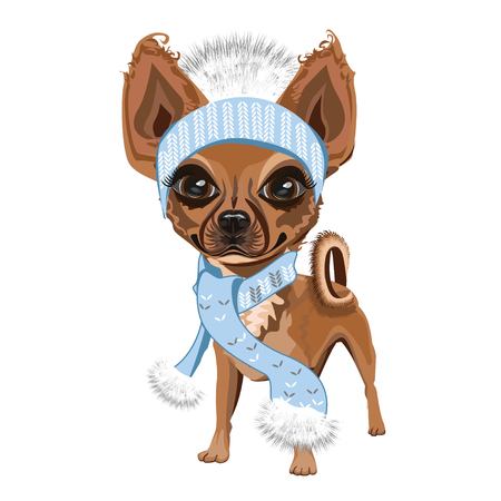doggy: Little doggy in hat
