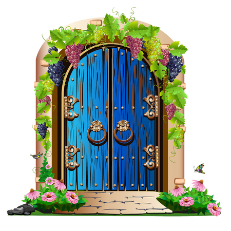 old wooden door in the garden Illustration