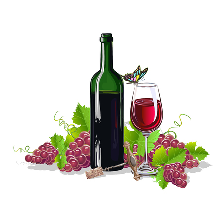 A bottle of wine with bunches of grapes. Realistic vector illustration.