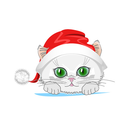 Cute cat in a winter hat with bubo. Vector illustration Ilustracja