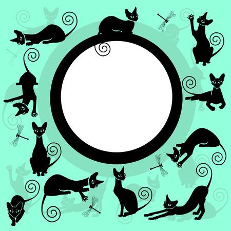 Color frames with black cats Illusztráció