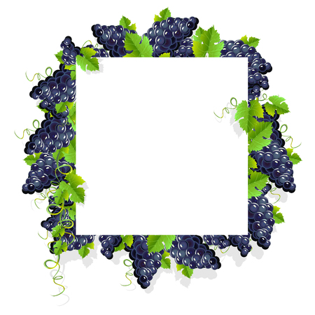 A realistic frame with black grapes. Invitation template or card. Vector illustration.