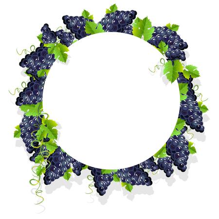 A realistic frame with black grapes. Invitation template or card. Vector illustration. Ilustração