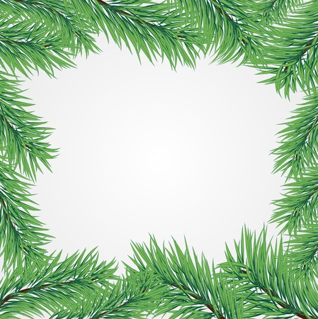 pine needles: Vector frame with Christmas tree branch